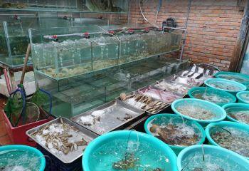 Типичная витрина перед рыбным рестораном, где можно поесть в Нячанге морепродуктов вкусно и недорого